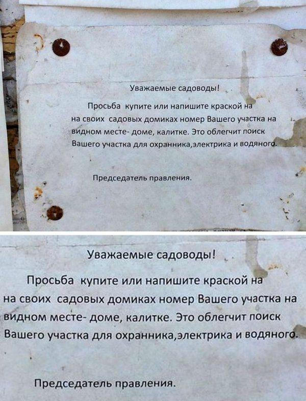205260_14_trinixy_ru.jpg