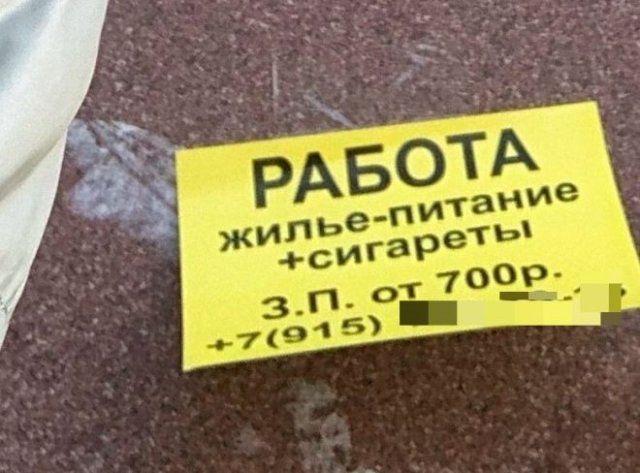 205300_1_1607924827_trinixy_ru.jpg