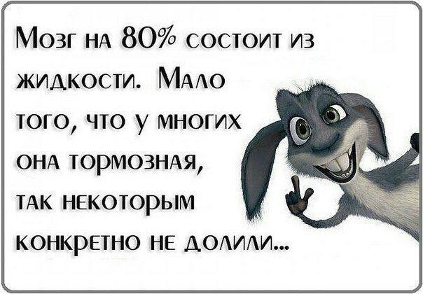 1607996097_10879755p57.jpg
