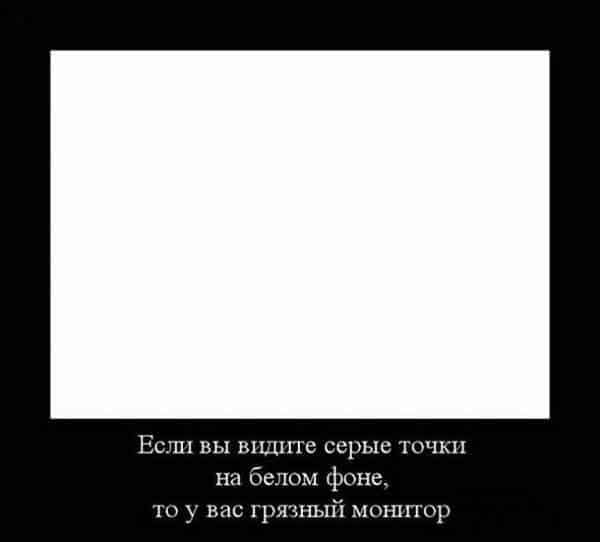 1607996128_10879758dtz.jpg