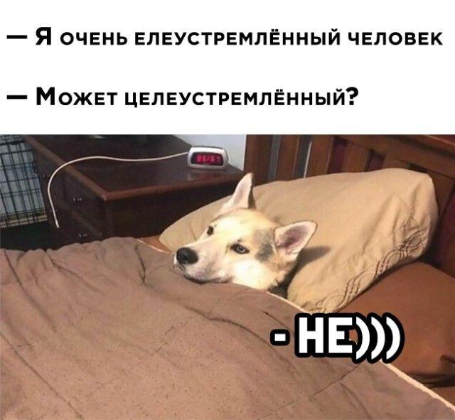 1607974765_24.jpg