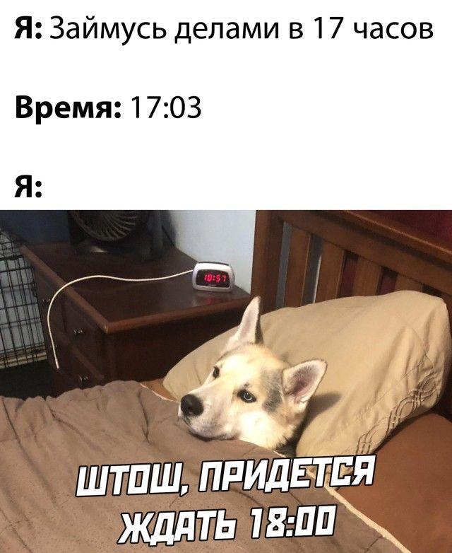 1607974744_29.jpg