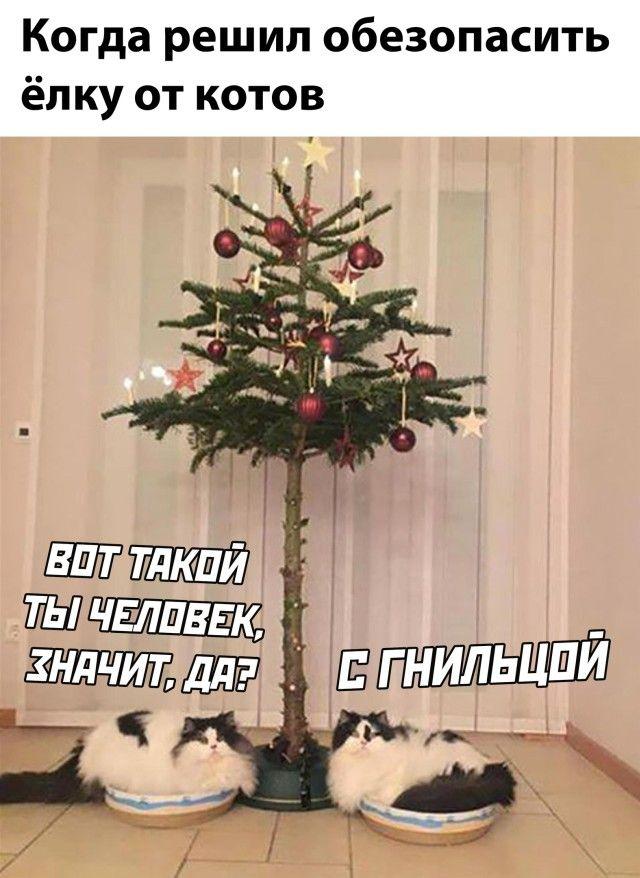 Новая порция позитива Приколы,myprikol,com