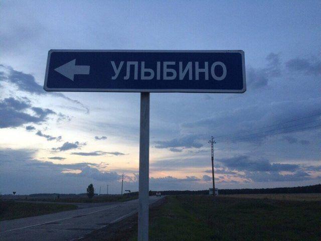205662_11_trinixy_ru.jpg