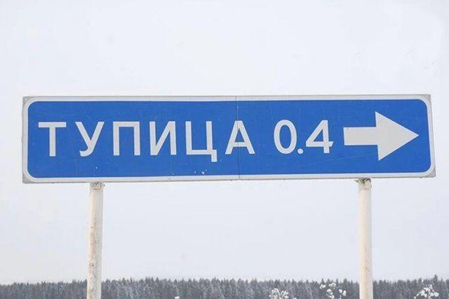205662_2_trinixy_ru.jpeg