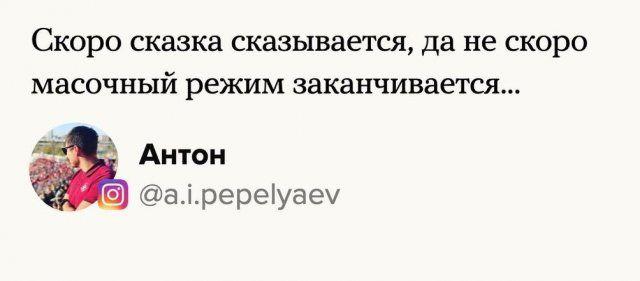 205647_13_trinixy_ru.jpg