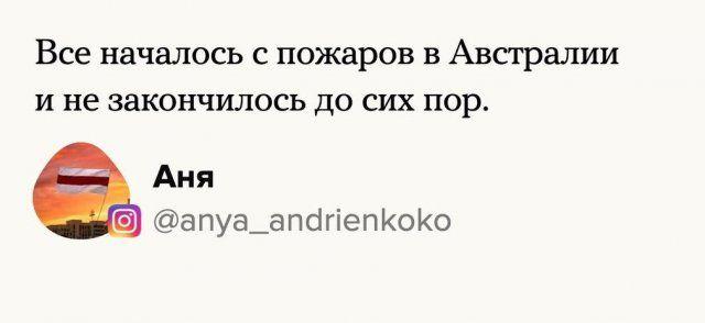 205647_7_trinixy_ru.jpg