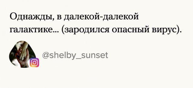 205647_9_trinixy_ru.jpg