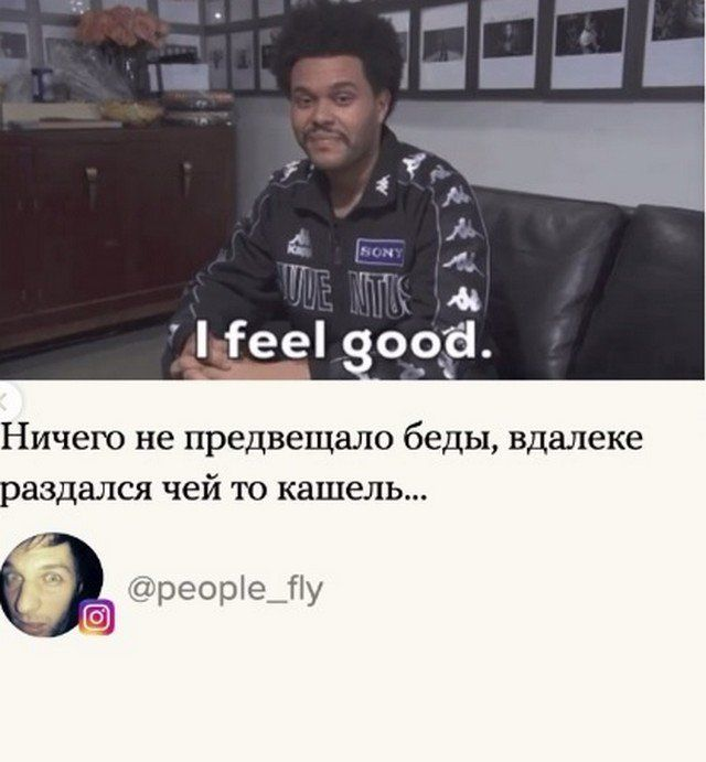 205647_2_trinixy_ru.jpg