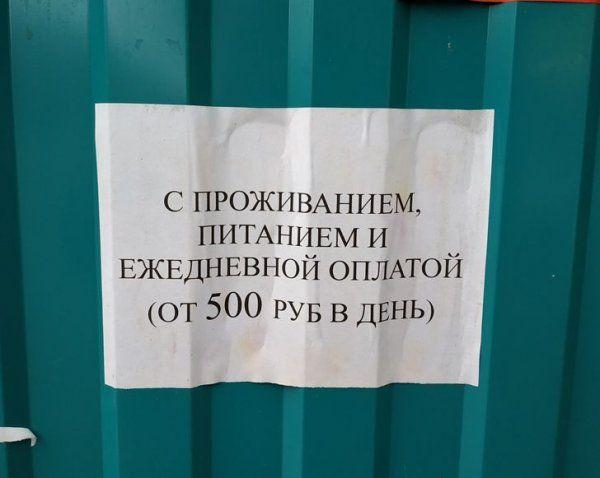 obyavleniy-zabavnyh-podborka-kartinki-smeshnye-kartinki-fotoprikoly