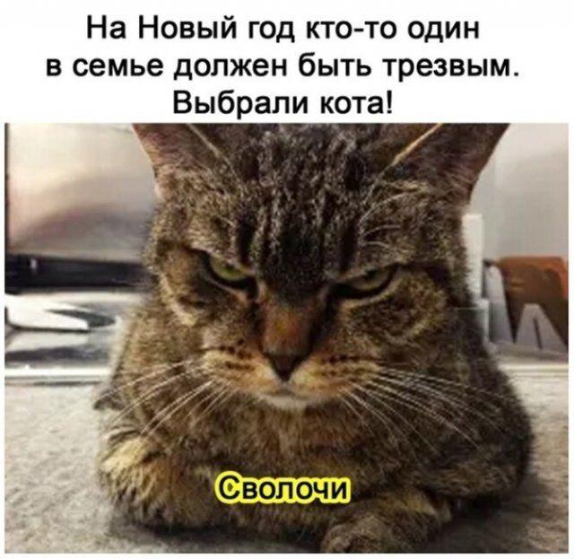 1608690058_1608578299_20.jpg