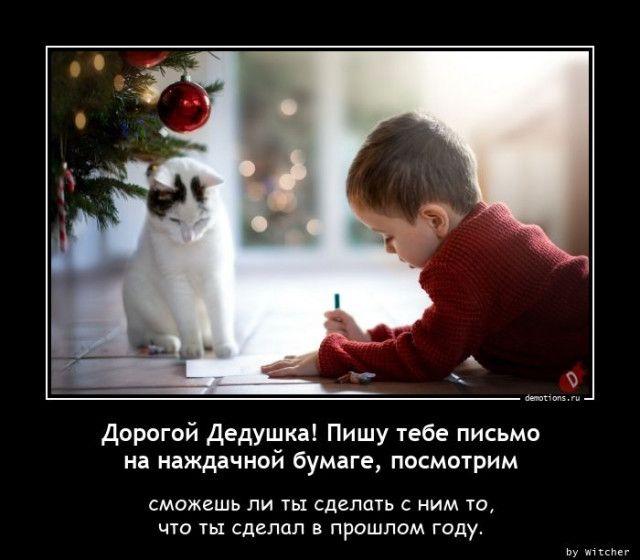 1608623955_demy-2.jpg