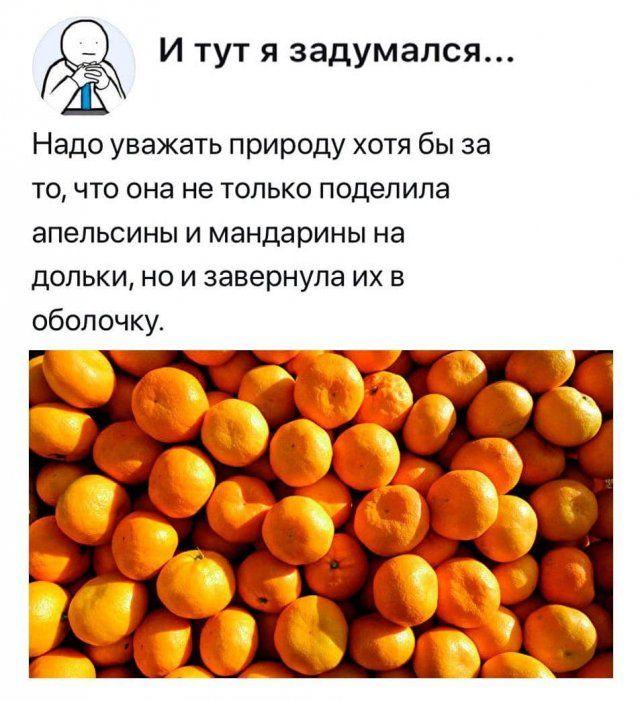 205895_15_trinixy_ru.jpg