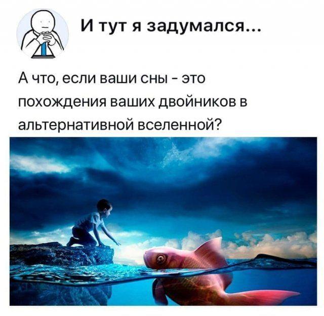 205895_14_trinixy_ru.jpg