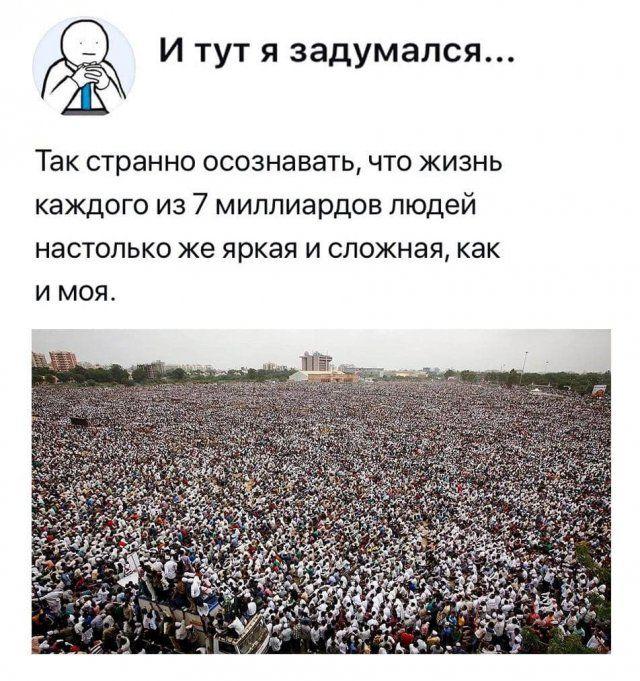 205895_13_trinixy_ru.jpg