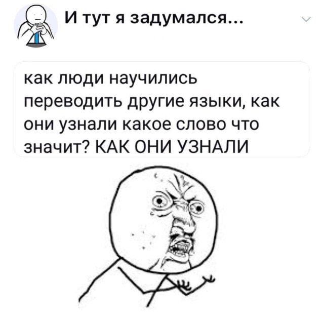 205895_10_trinixy_ru.jpg