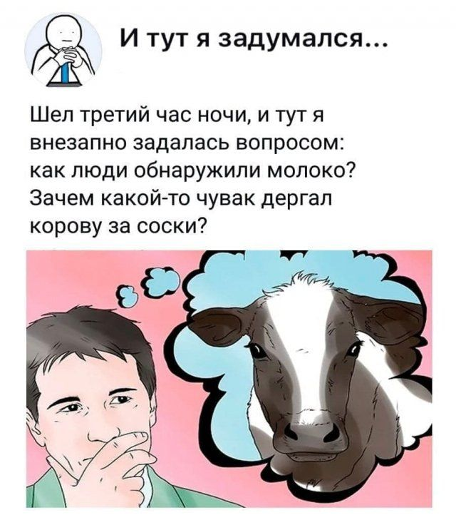 205895_9_trinixy_ru.jpg