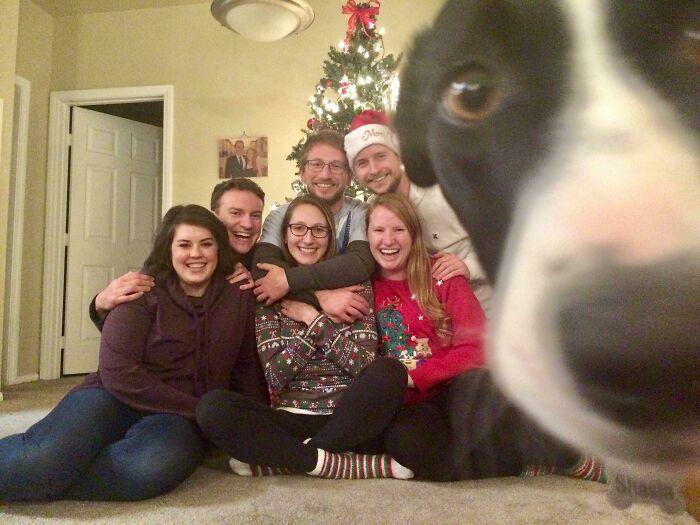 собака влезла в кадр с семьей у елки