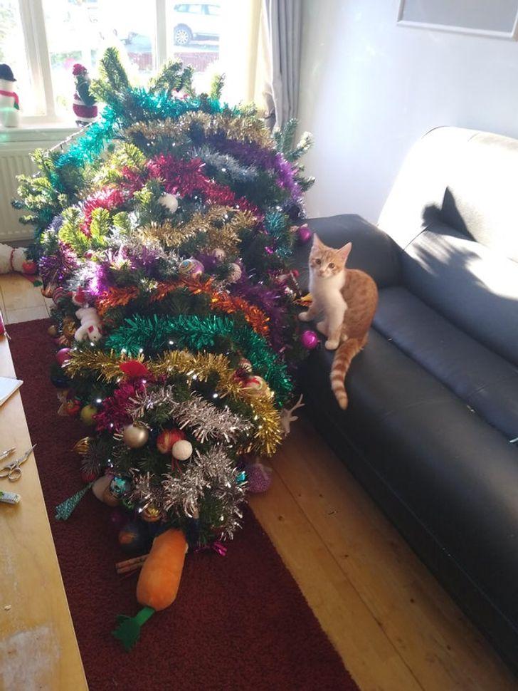 рыжий котенок перевернул елку