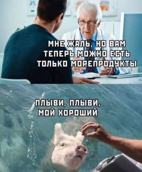 Прикольные весёлые картинки дня Приколы,myprikol,com