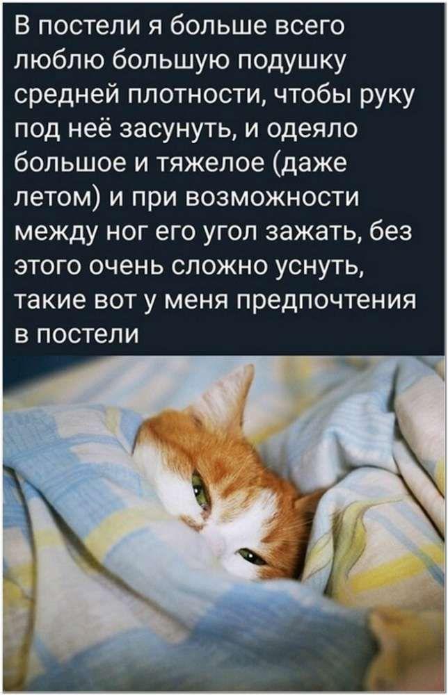 1609395311_1609321036_kaifolog_net_kartinka-47.jpg