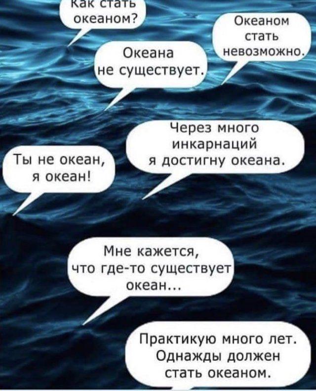 206323_15_trinixy_ru.jpg