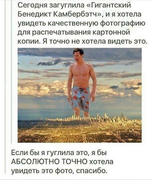 206323_13_trinixy_ru.jpg