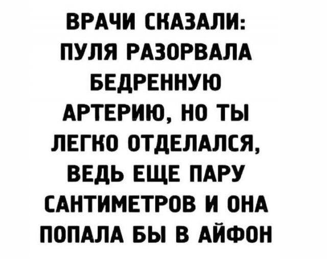 206323_8_trinixy_ru.jpg