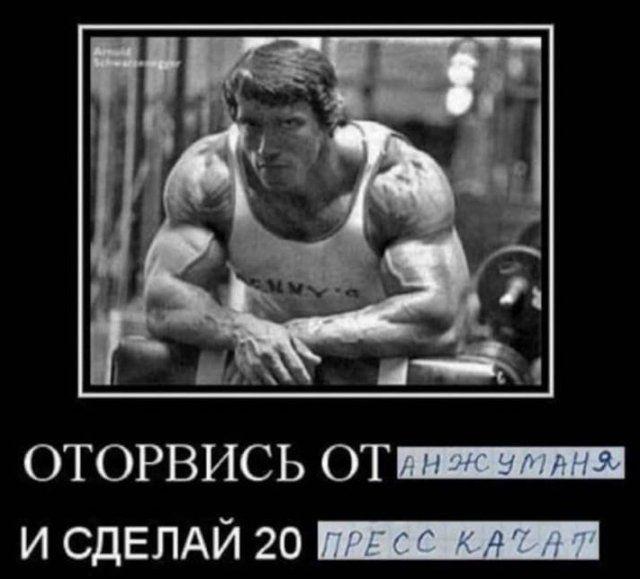 206323_7_trinixy_ru.jpg