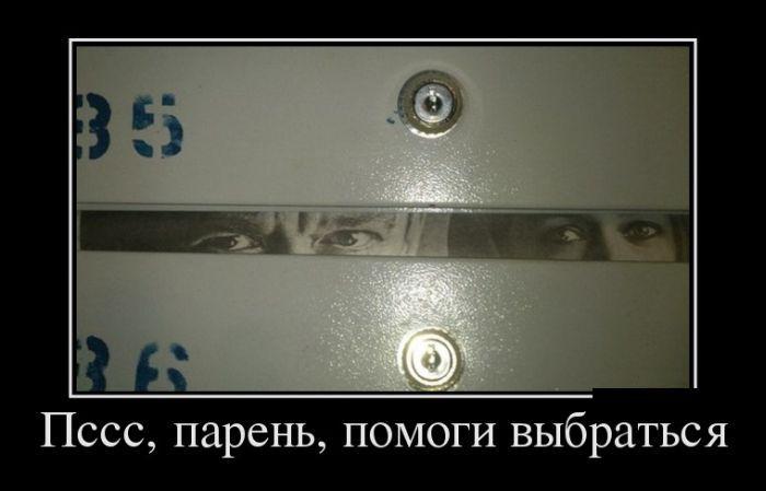 1609905546_10.jpg