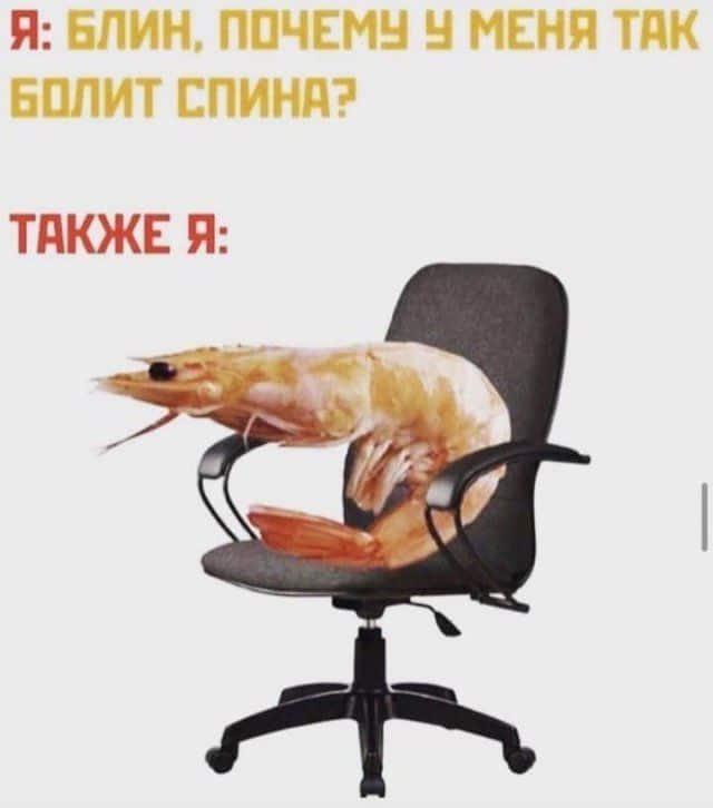 206386_4_trinixy_ru.jpg