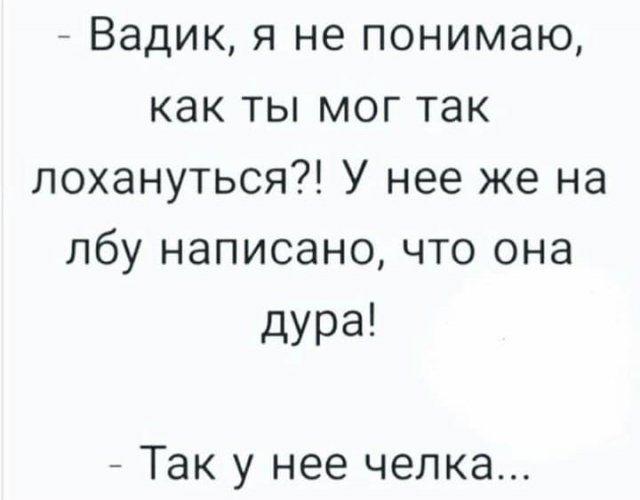 206386_6_trinixy_ru.jpg