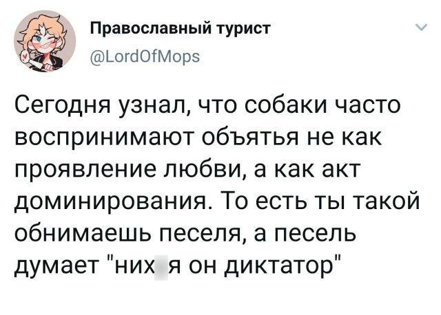 206418_3_trinixy_ru.jpg