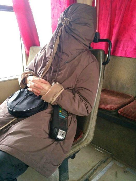 Курьезные моменты в общественном транспорте Приколы,myprikol,com,дизайн,лучшее,собаки