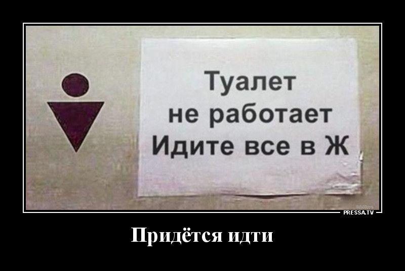 Демотиваторы 11.01.2021 Приколы,pressa,tv