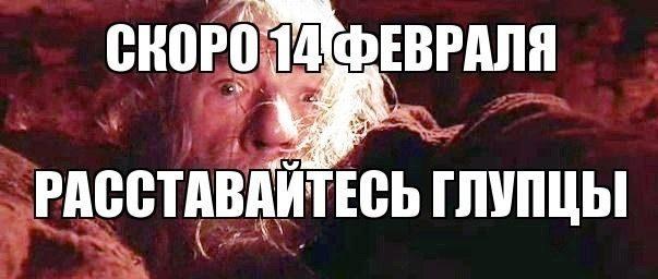 дамблдор мем