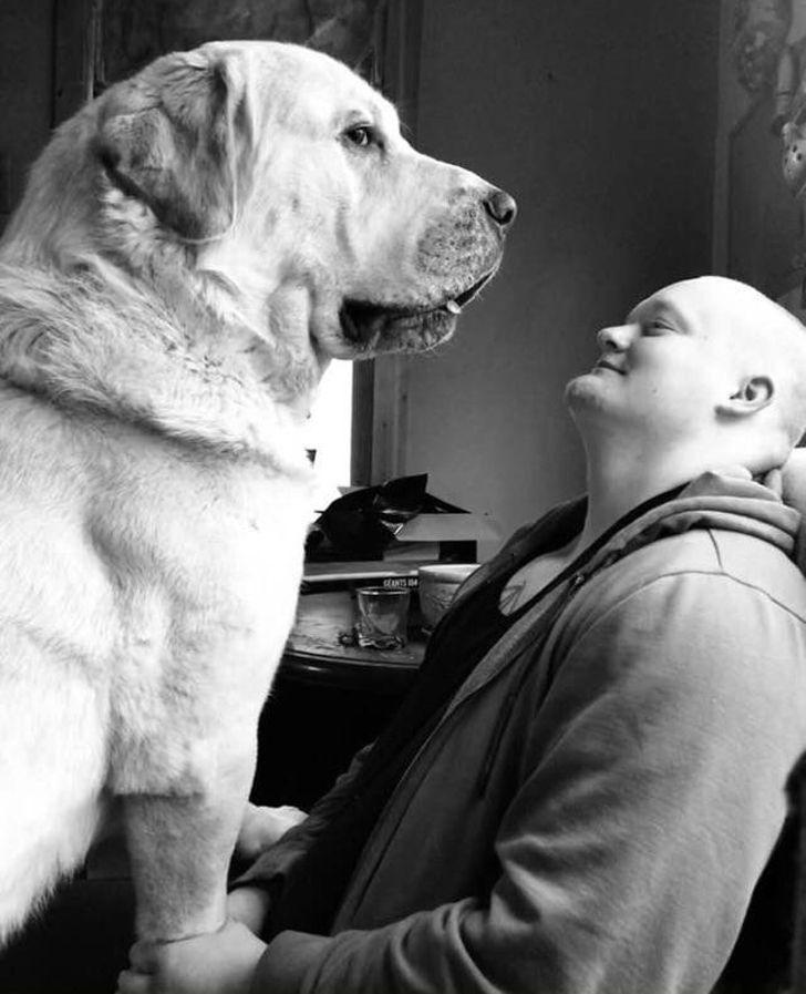 черно-белое фото пса с хозяином