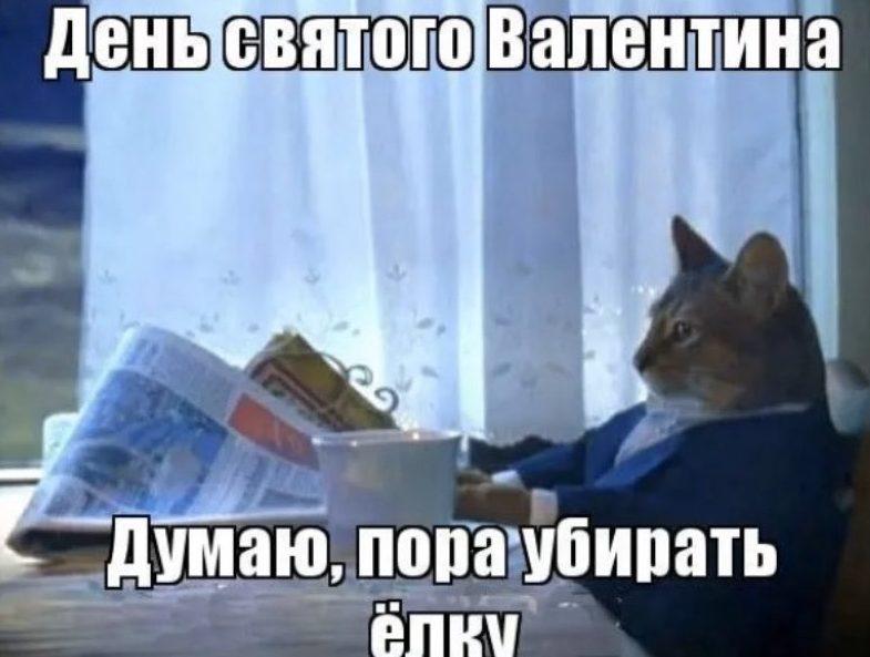 кот в пиджаке с газетой мем