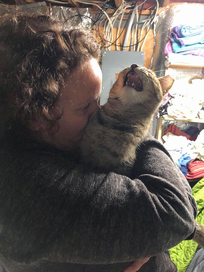 женщина целует кошку, которая орет