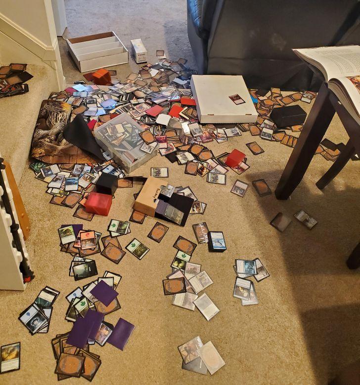 карточки на полу