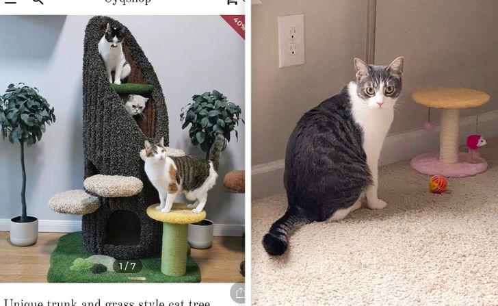 подставки для котов