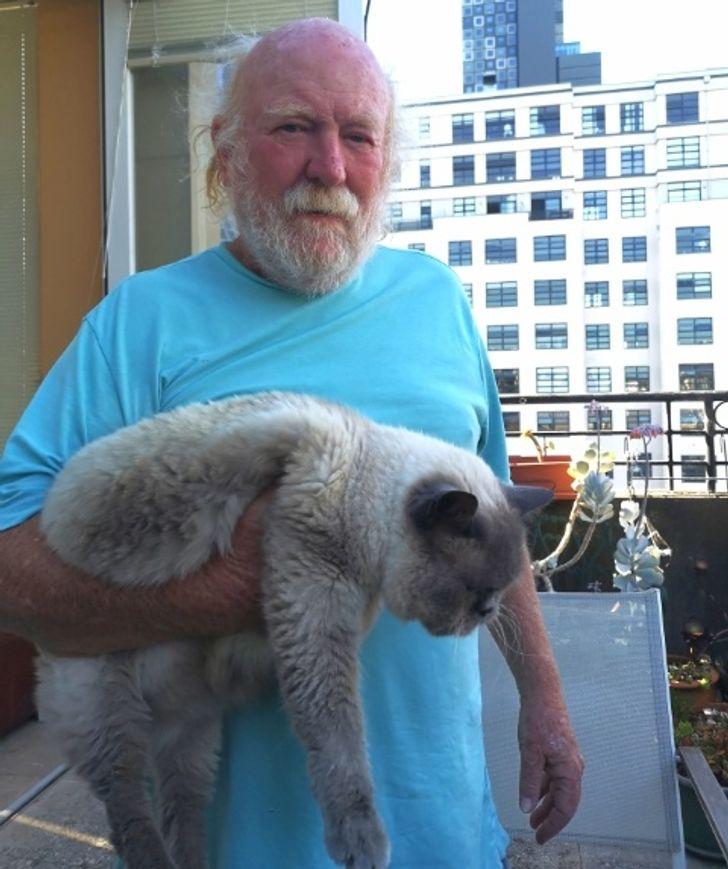 мужчина держит кота в руке
