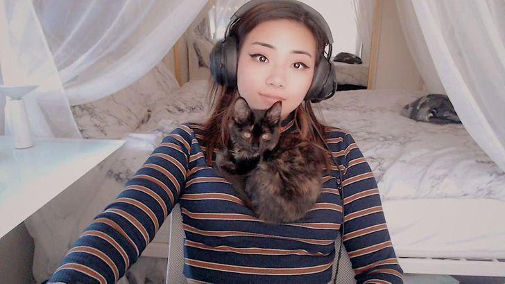 котенок лежит на груди у девушки