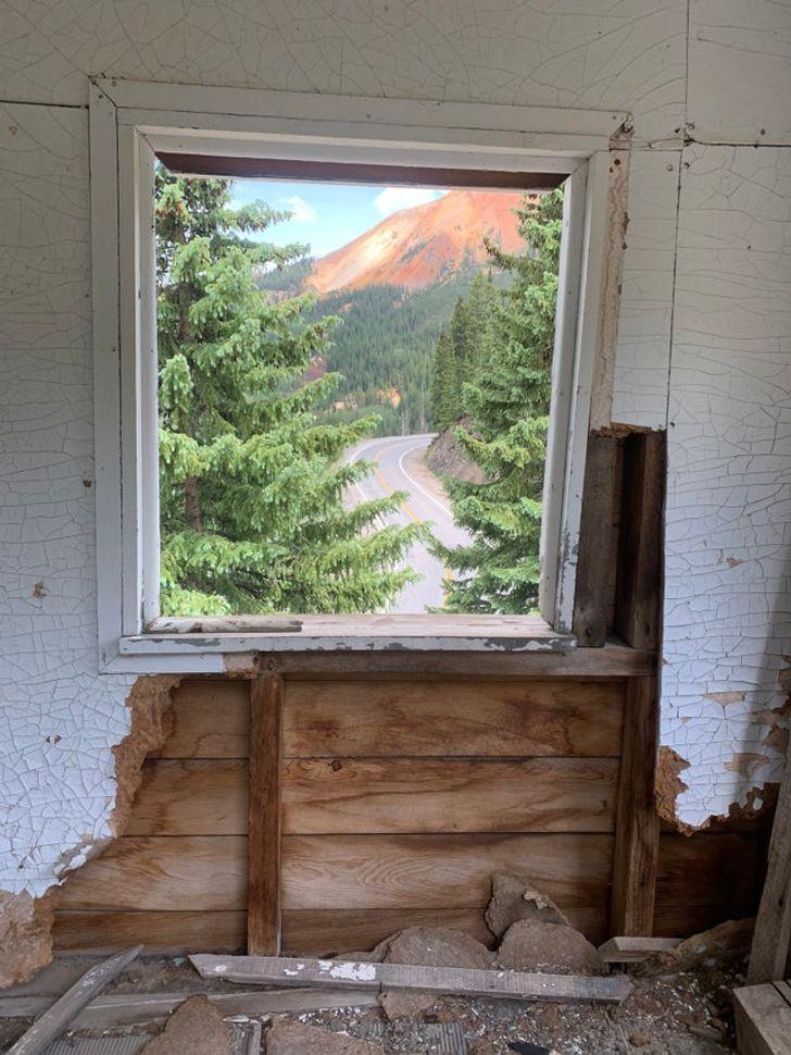 окно с видом на ели и гору