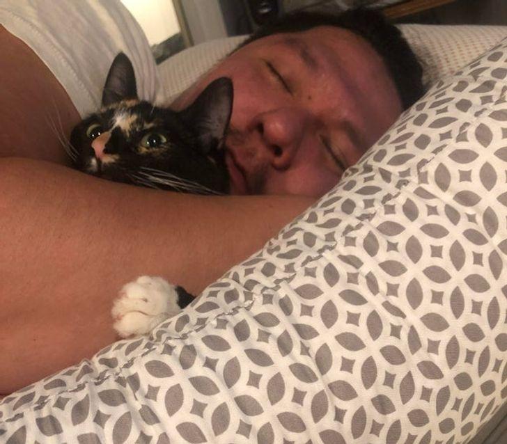 мужчина спит в обнимку с котом