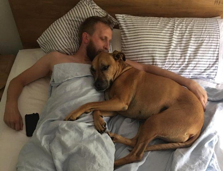 мужчина и собака на кровати