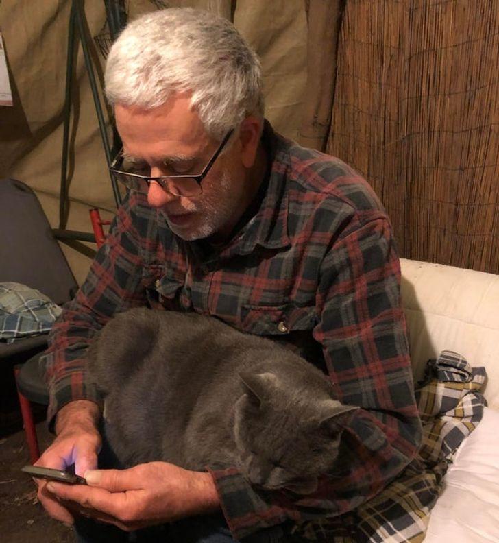 седой мужчина в очках с серым котом на коленях
