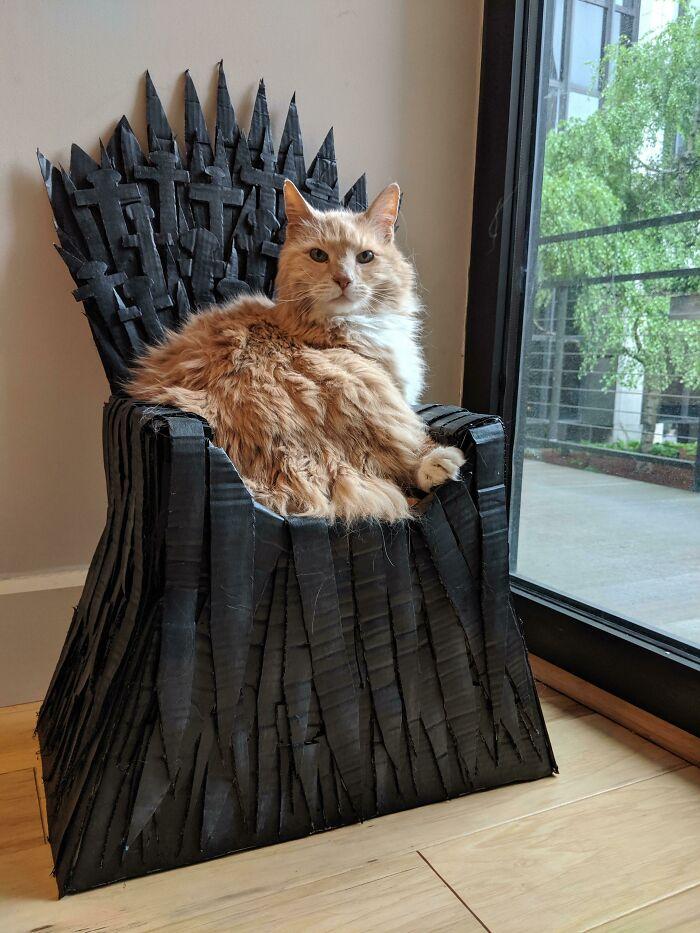 рыжий кот сидит на троне