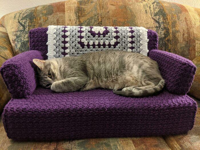 кошка лежит на вязанном диване