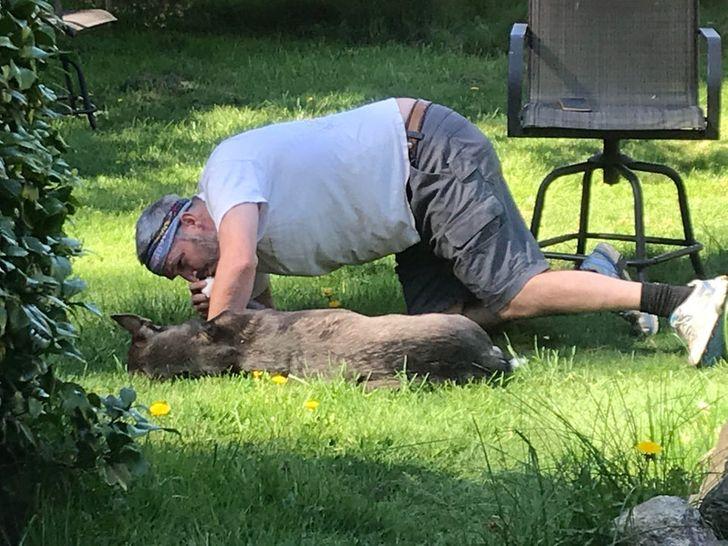 мужчина целует лапу собаке